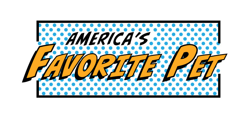 Please vote for The Band Famous's Kid for America's Favorite Pet!
